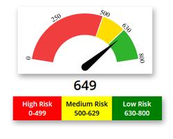 IT risk assessment companies